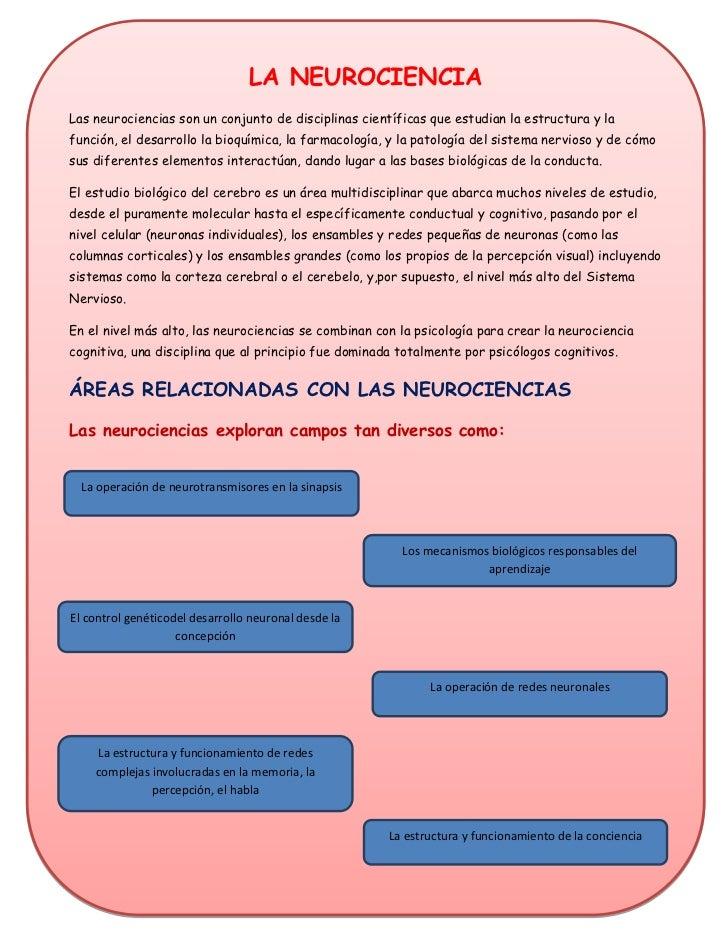 LA NEUROCIENCIALas neurociencias son un conjunto de disciplinas científicas que estudian la estructura y lafunción, el des...