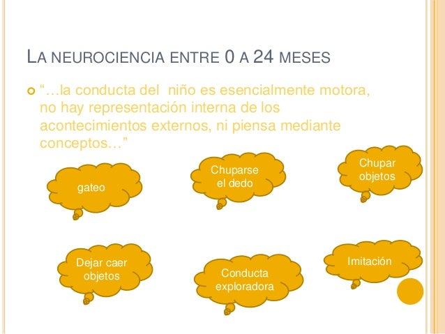 LA NEUROCIENCIA ENTRE 2 A 7 AÑOS. El niño puede usar símbolos y palabras parapensar. Solución intuitiva de los problemas,...