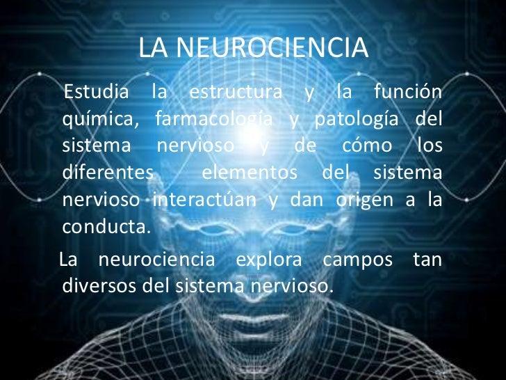 Resultado de imagen de La Neurociencia