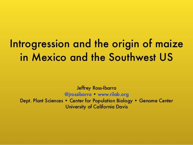 Introgression and the origin of maize  in Mexico and the Southwest US  Jeffrey Ross-Ibarra  @jrossibarra • www.rilab.org  ...