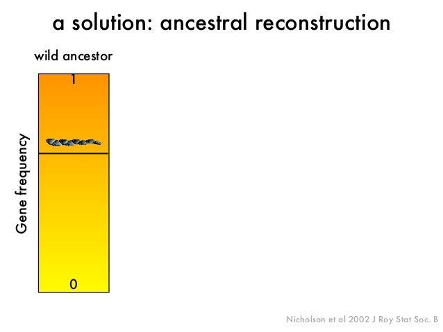 Gene frequency  a solution: ancestral reconstruction  Nicholson et al 2002 J Roy Stat Soc. B  wild ancestor  1  0