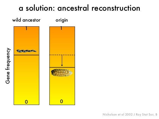origin  Gene frequency  a solution: ancestral reconstruction  Nicholson et al 2002 J Roy Stat Soc. B  wild ancestor  1  0 ...