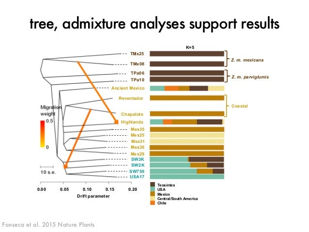tree, admixture analyses support results  K=5  TMx25  TMx08  TPa06  TPa10  Ancient Mexico  Reventador  Chapalote  Highland...