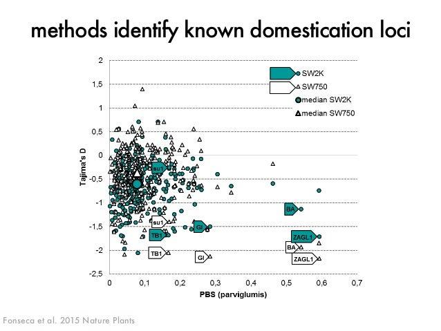 methods identify known domestication loci  J. ROSS-IBARRA / UC DAVIS  median PBS values  parviglumis  SW750 SW2K  dehyd1A ...