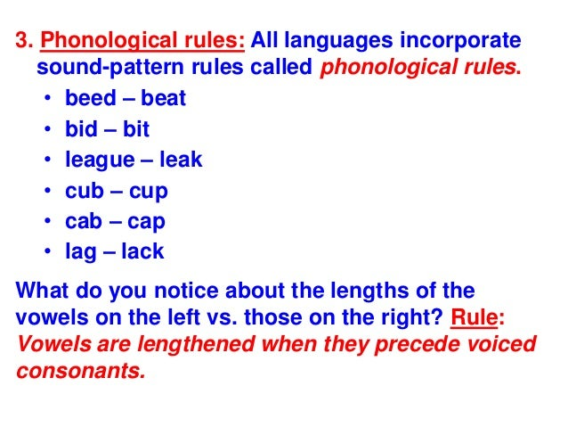 phonological rules and their structure