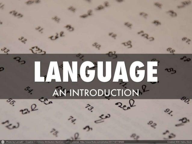 Language culture communication  social care review
