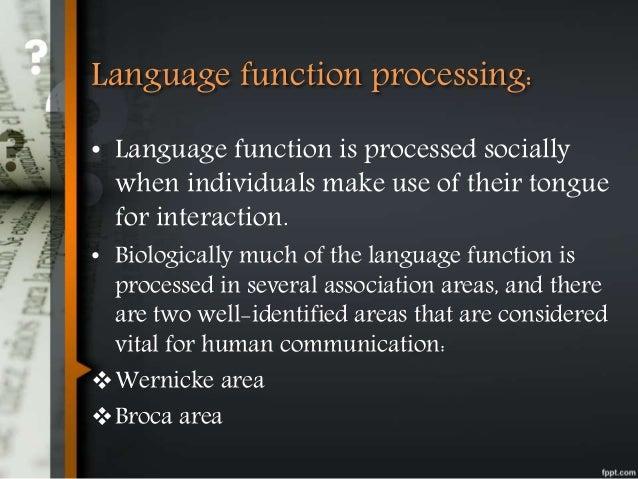 Phatic communication malinowski study
