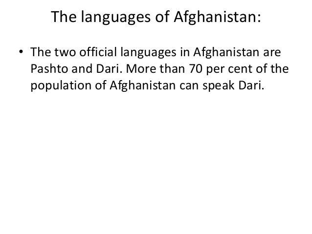 Language in focus