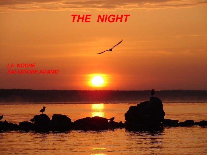 THE  NIGHT<br />LA  NOCHE<br />SALVATORE ADAMO<br />