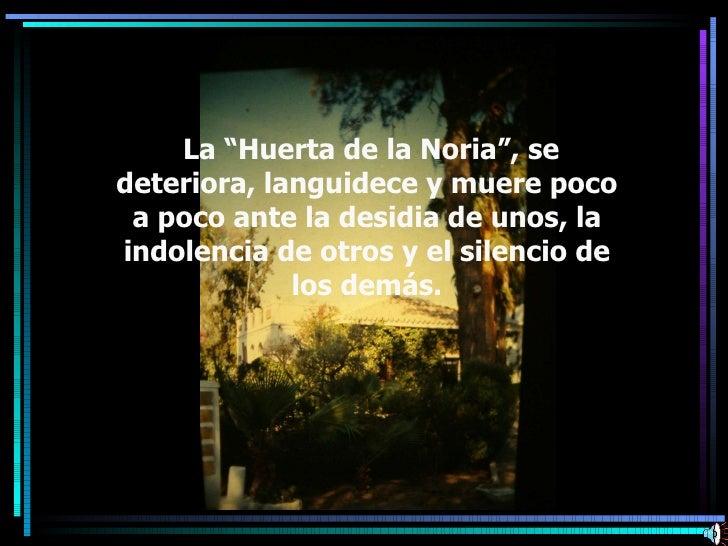"""La """"Huerta de la Noria"""", se deteriora, languidece y muere poco a poco ante la desidia de unos, la indolencia de otros y el..."""