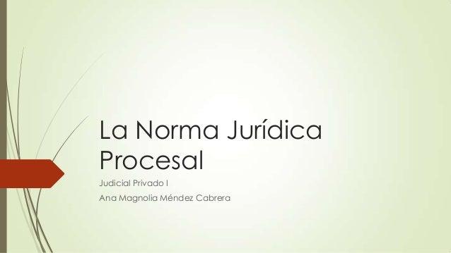 La Norma JurídicaProcesalJudicial Privado IAna Magnolia Méndez Cabrera