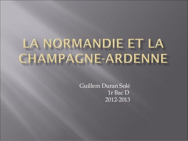 Guillem Duran Solé          1r Bac D         2012-2013