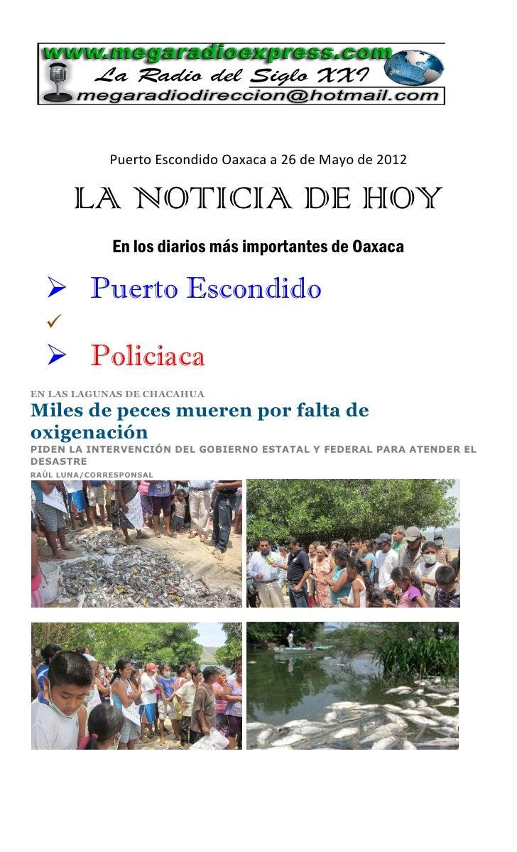 Puerto Escondido Oaxaca a 26 de Mayo de 2012       LA NOTICIA DE HOY              En los diarios más importantes de Oaxaca...
