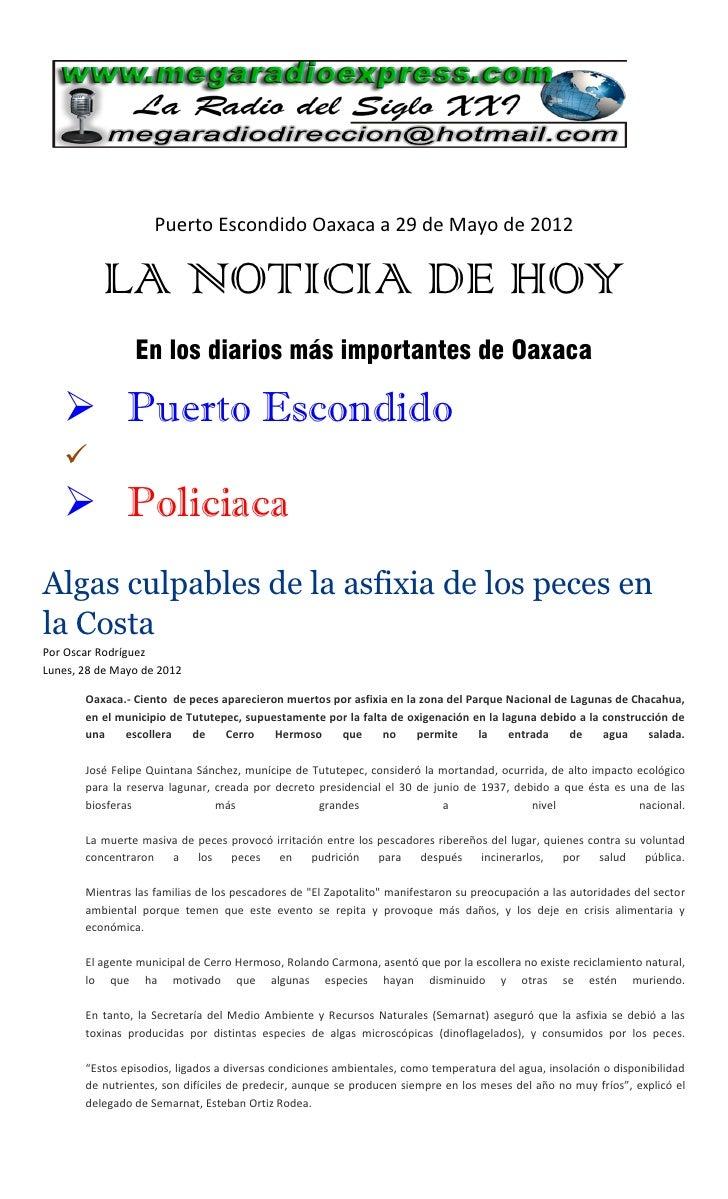 Puerto Escondido Oaxaca a 29 de Mayo de 2012          LA NOTICIA DE HOY                En los diarios más importantes de O...
