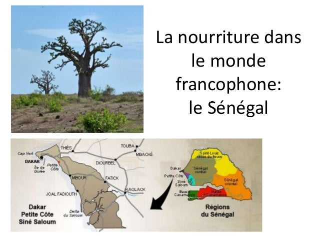 La nourriture dans le monde francophone: le Sénégal