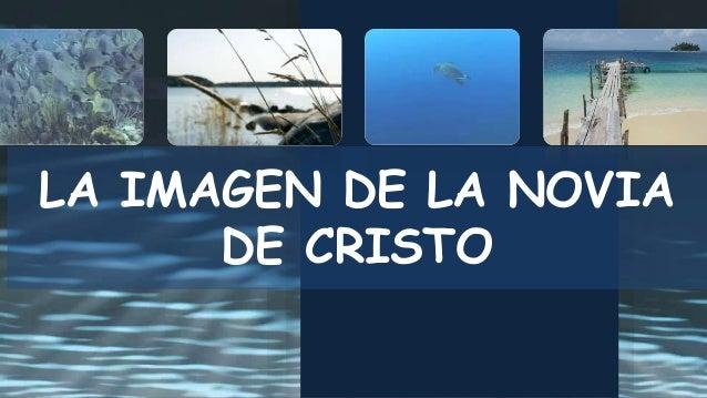 LA IMAGEN DE LA NOVIA DE CRISTO