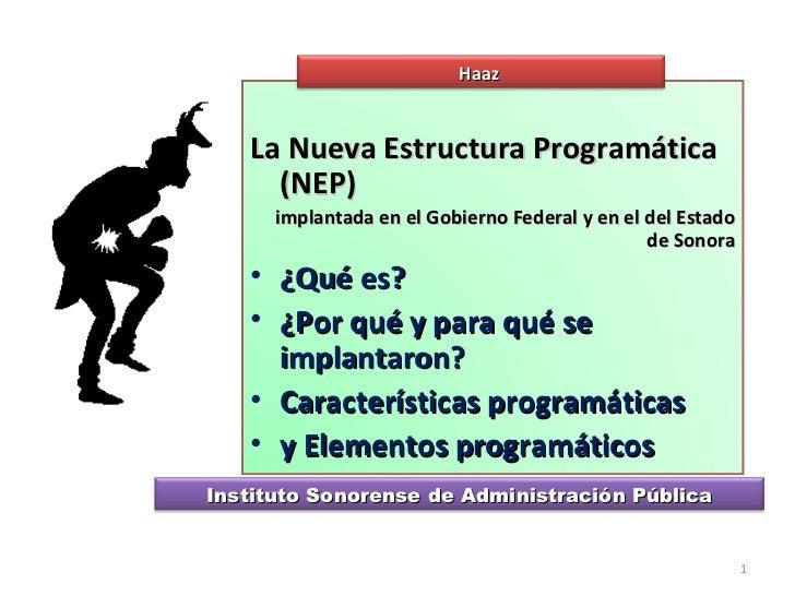 La Nueva Estructura Programatica En Presupuestos