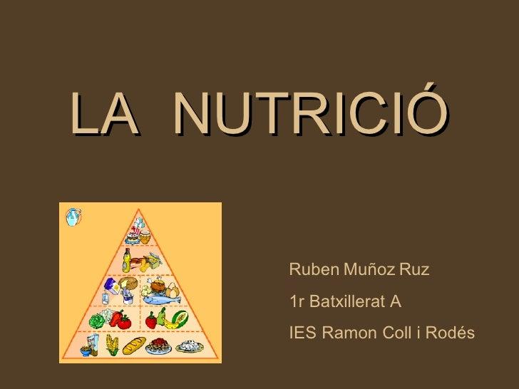LA  NUTRICIÓ Ruben   Muñoz   Ruz 1r Batxillerat A IES Ramon Coll i Rodés