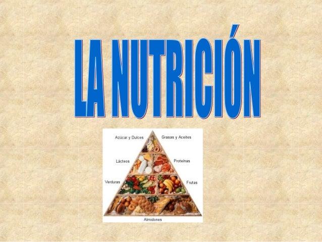 FUNCIÓN DE NUTRICIÓN. La nutrición nos proporciona energía para nuestras actividades y materiales de construcción para nue...
