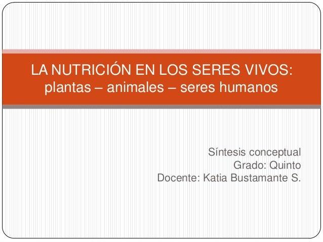 LA NUTRICIÓN EN LOS SERES VIVOS:  plantas – animales – seres humanos                           Síntesis conceptual        ...