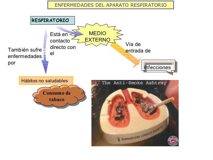 ENFERMEDADES DEL APARATO RESPIRATORIO Infecciones Vía de entrada de Está en contacto directo con el También sufre enfermed...