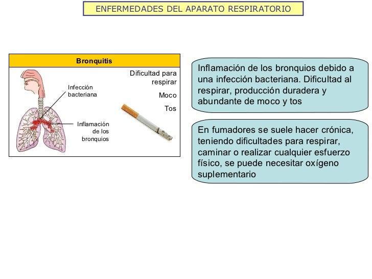 ENFERMEDADES DEL APARATO RESPIRATORIO Bronquitis Dificultad para respirar Moco Tos Infección bacteriana Inflamación de los...
