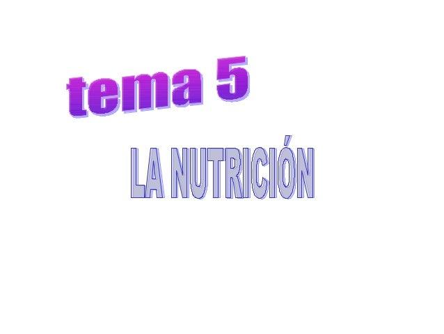 LA NUTRICIÓN •  La función de nutrición proporciona energía y oxigena a nuestras células.  • •  APARATO DIGESTIVO: Realiza...
