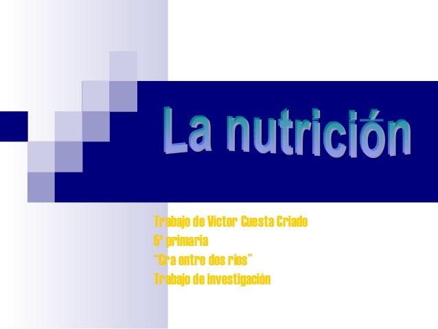 """Trabajo de Víctor Cuesta Criado5º primaria""""Cra entre dos rios""""Trabajo de investigación"""