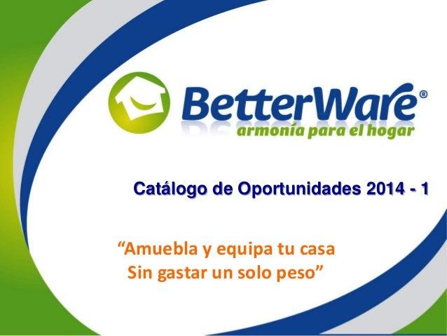 Lanzamientos betterware 2014 - Amuebla tu casa ...