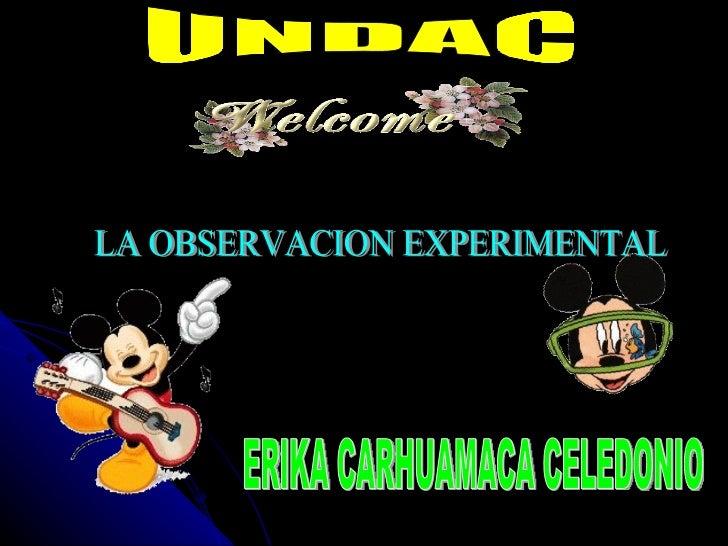 UNDAC LA OBSERVACION EXPERIMENTAL ERIKA CARHUAMACA CELEDONIO