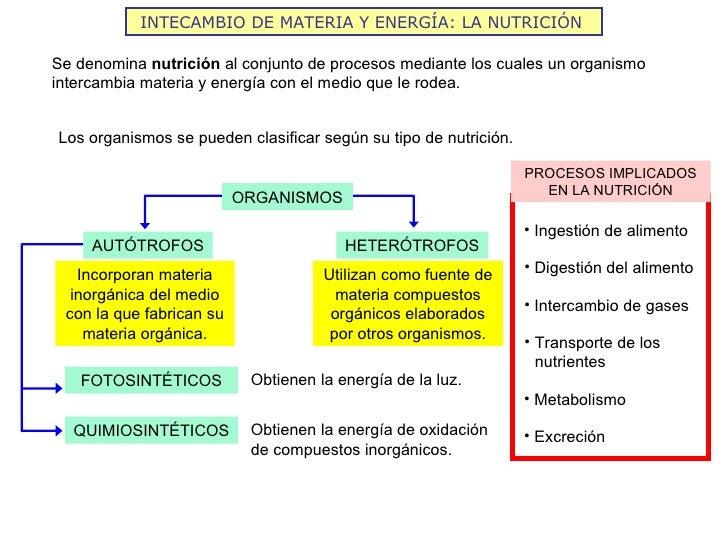 INTECAMBIO DE MATERIA Y ENERGÍA: LA NUTRICIÓNSe denomina nutrición al conjunto de procesos mediante los cuales un organism...