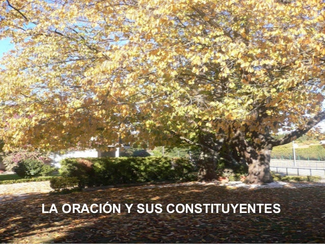 LA ORACIÓN Y SUSSUS     LA ORACIÓN Y CONSTITUYENTES    CONSTITUYENTES