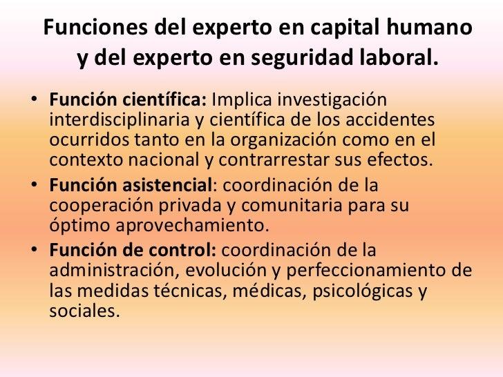 Funciones del experto en capital humanoy del experto en seguridad laboral.<br />Función científica: Implica investigación ...