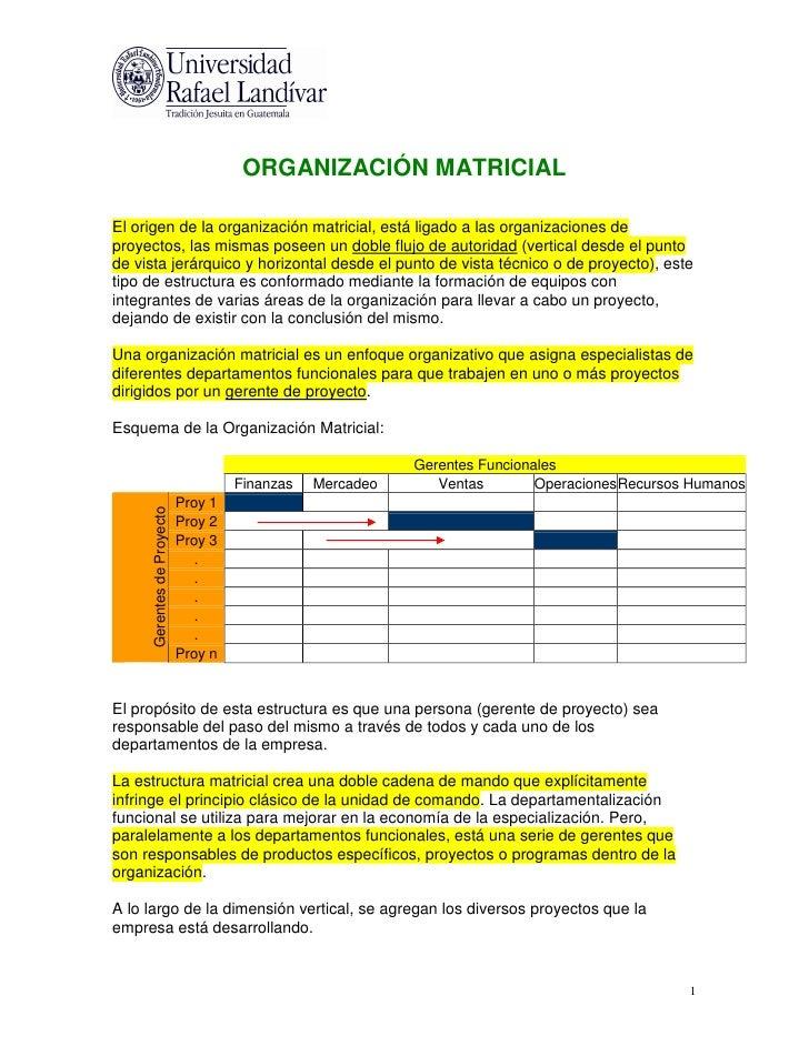 La Organización Matricial