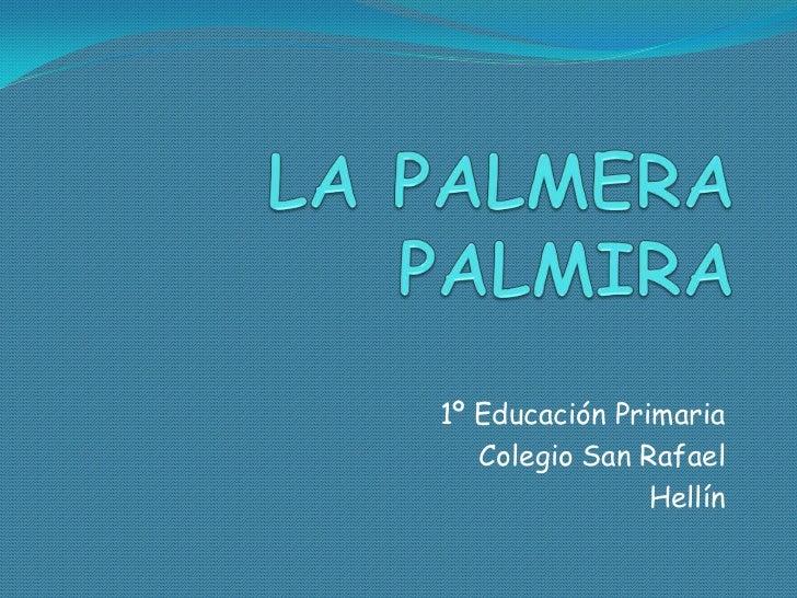 1º Educación Primaria   Colegio San Rafael                Hellín