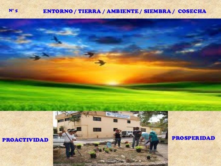 N° 5     ENTORNO / TIERRA / AMBIENTE / SIEMBRA / COSECHAPROACTIVIDAD                                   PROSPERIDAD