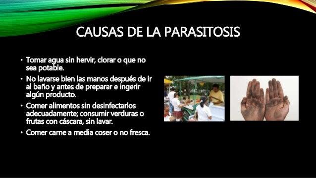 La parasitosis - Frutas para ir al bano ...