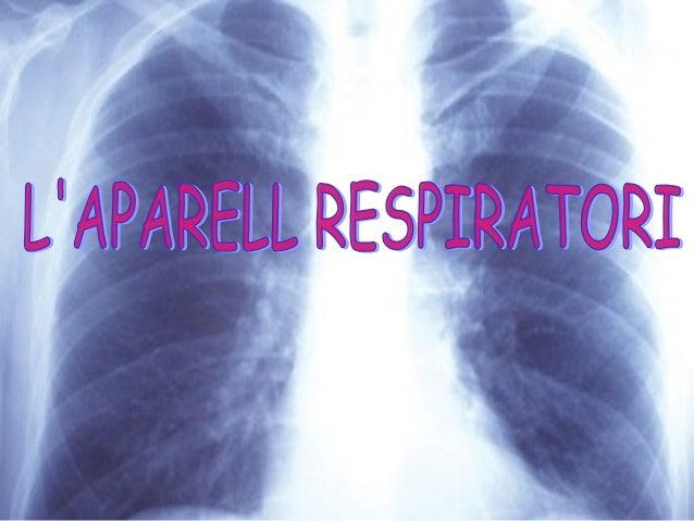 L'APARELL RESPIRATORIL'APARELL RESPIRATORI L'aparell respiratori humà és l'aparell encarregat de captar l'oxigen (O2 ) de ...