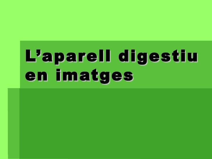 L'aparell digestiu en imatges