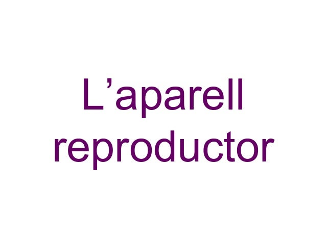L'aparell reproductor