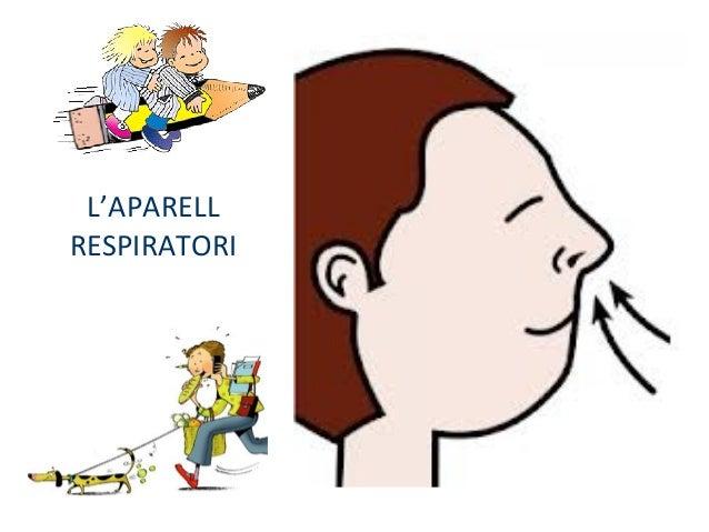 L'APARELL RESPIRATORI