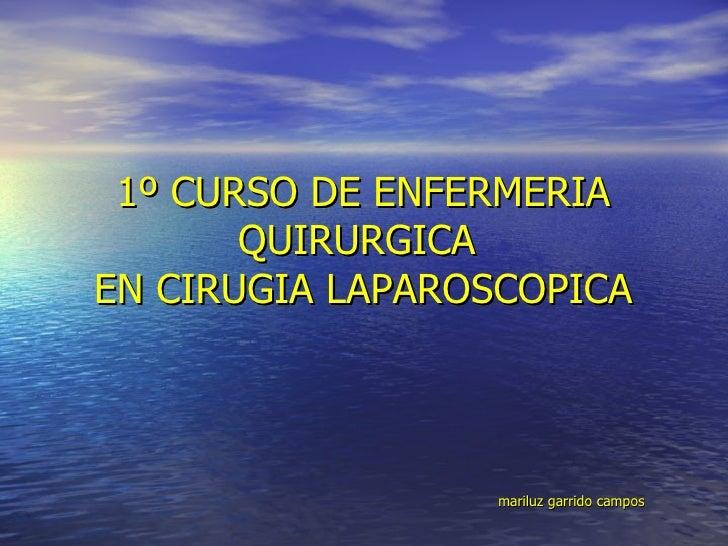 1º CURSO DE ENFERMERIA QUIRURGICA  EN CIRUGIA LAPAROSCOPICA     mariluz garrido campos