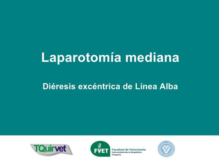 Laparotomía mediana Diéresis excéntrica de Línea Alba