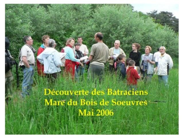 """""""Jardiner bio, jardiner autrement"""" Conférence débat autour des techniques du jardinage biologique,par Luc Bienvenu maraîch..."""