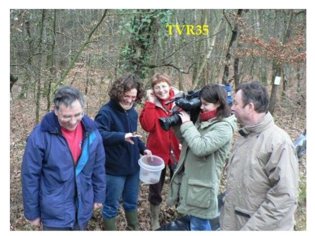 Nos activités d'un an sur l'autre Sauvegarde des batraciens au Bois de Soeuvres Comptage des nids d'hirondelles dans Vern ...