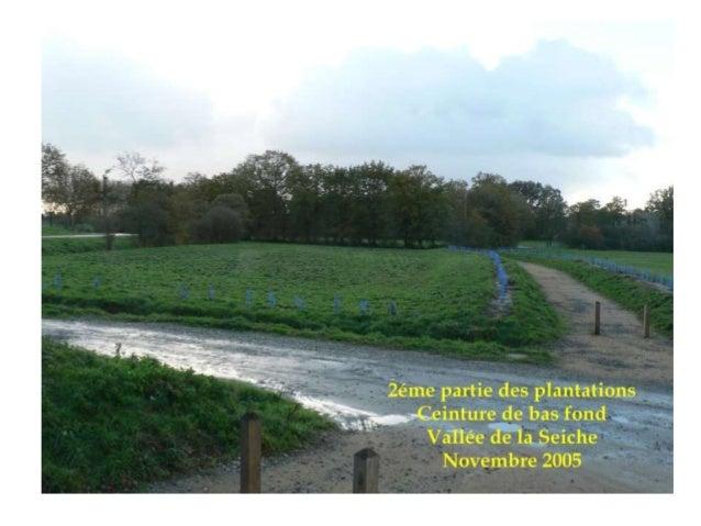 OPERATION DE PROTECTION ET COMPTAGE DES BATRACIENS Bois de Soeuvres La migration des batraciens vers leur lieux de ponte a...