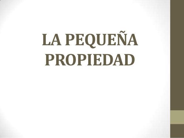 LA PEQUEÑA PROPIEDAD