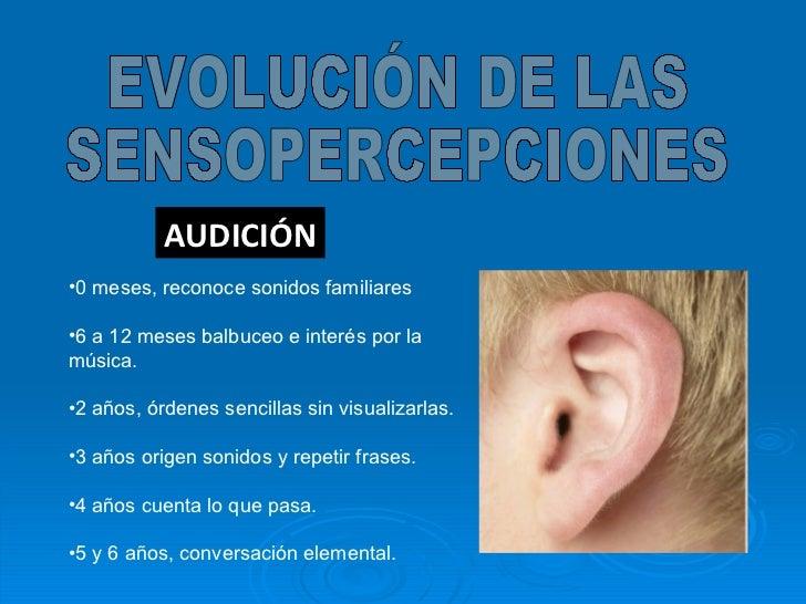 AUDICIÓN EVOLUCIÓN DE LAS  SENSOPERCEPCIONES <ul><li>0 meses, reconoce sonidos familiares </li></ul><ul><li>6 a 12 meses b...