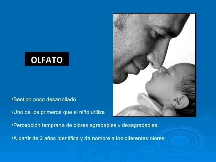 OLFATO <ul><li>Sentido poco desarrollado </li></ul><ul><li>Uno de los primeros que el niño utiliza </li></ul><ul><li>Perce...