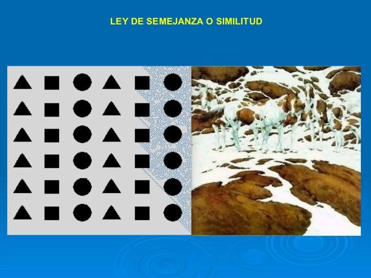 LEY DE SEMEJANZA O SIMILITUD